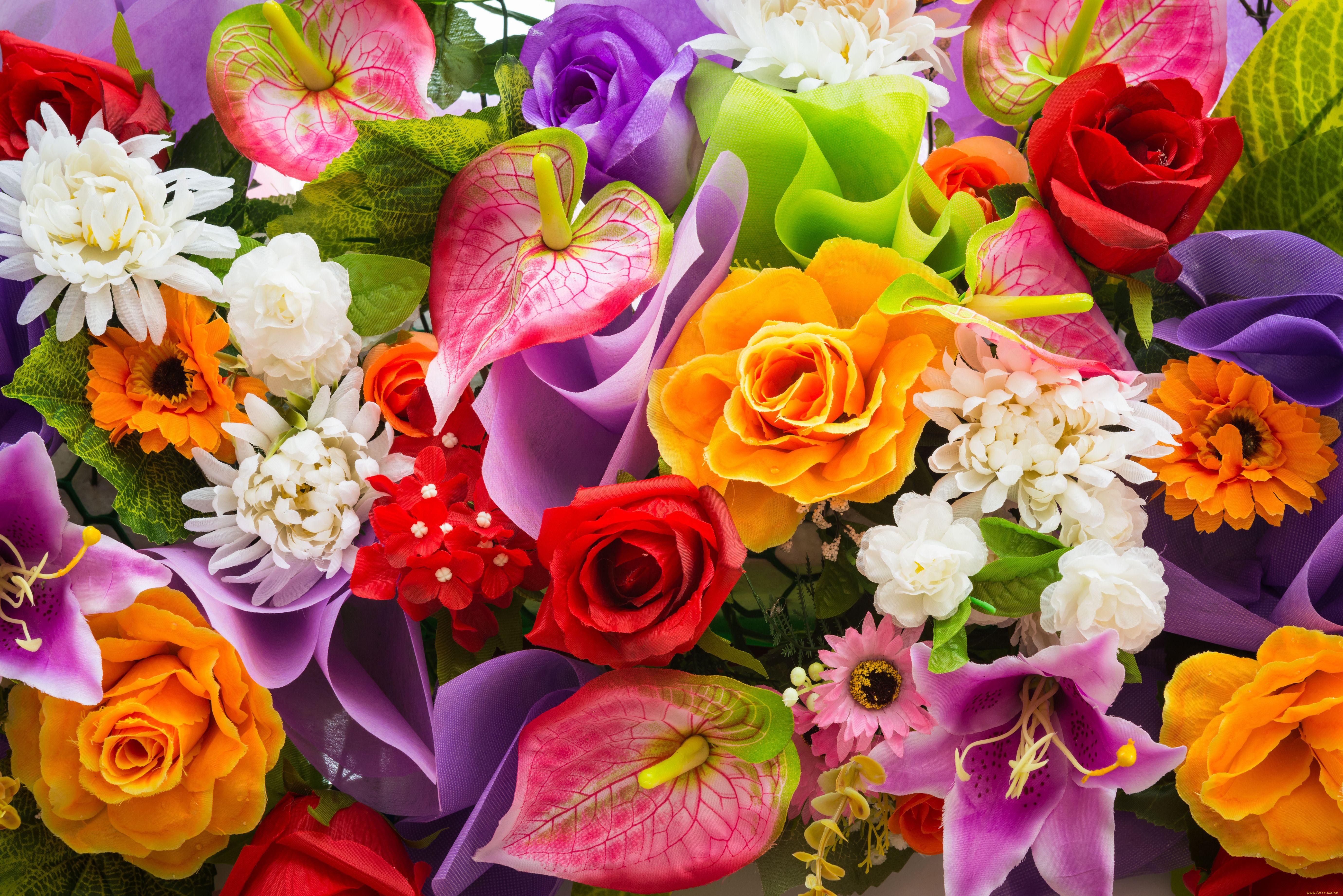 Картинки яркий цветок